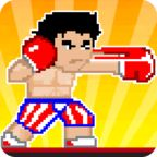 拳击战斗机 - BOXING FIGHTER:SUPER PUNCH